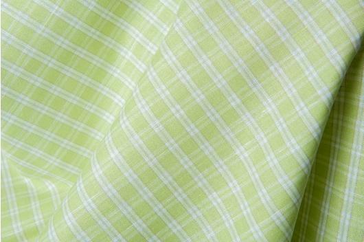 Lysegrønn bred blanding med hvite ruter